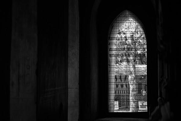 Window di Lorenza Cini