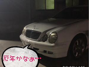 CLK W208 のカスタム事例画像 猫田慎之介さんの2020年07月12日23:20の投稿