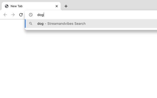 Streamandvibes Search