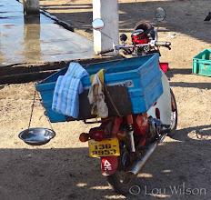 Photo: Door To Door Fish On Ice Dickwella Sri Lanka