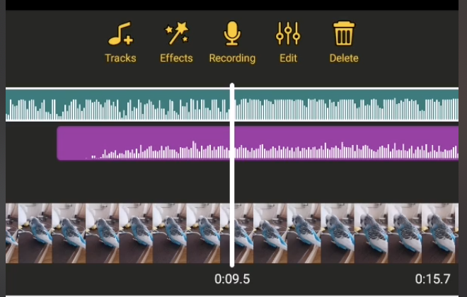 audio editing banuba video editor
