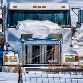Different Kinds of White by Sheen Deis - Transportation Automobiles ( semitruck, white, snow, abandoned, transportation )