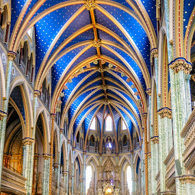 Notre Dame Cathedral by Lee Davenport - Buildings & Architecture Places of Worship (  )