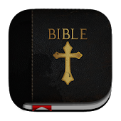 NIV Bible (New International)
