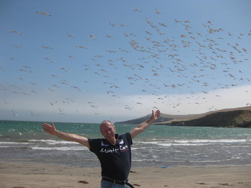 Volare! di Alexbarbi