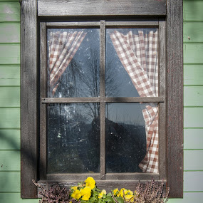 Old window by Tom Mat - Buildings & Architecture Architectural Detail ( old house, home, window, house, flower )