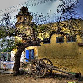 India on Cart by Aparajita Saha - City,  Street & Park  Street Scenes ( village, hampi, bullock cart, india, cart, old building )