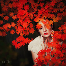 Wedding photographer Anna Volchek (missis). Photo of 08.10.2015