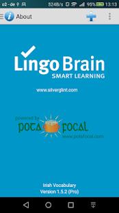 LingoBrain - Irish - náhled
