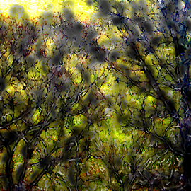 Trees With Green and Yellow by Edward Gold - Digital Art Things ( digital photography, red leaves, artistic, trees, digital art, green and yellow background,  )
