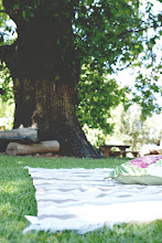 Photo: Picnic style under the Oak tree
