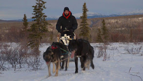 Best of Wild Alaska thumbnail