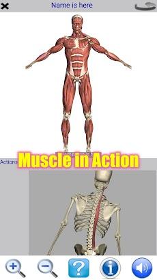 Visual Anatomy Freeのおすすめ画像1