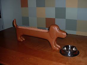 Photo: Cracker Weiner Dog