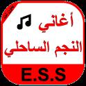ESS Musique icon