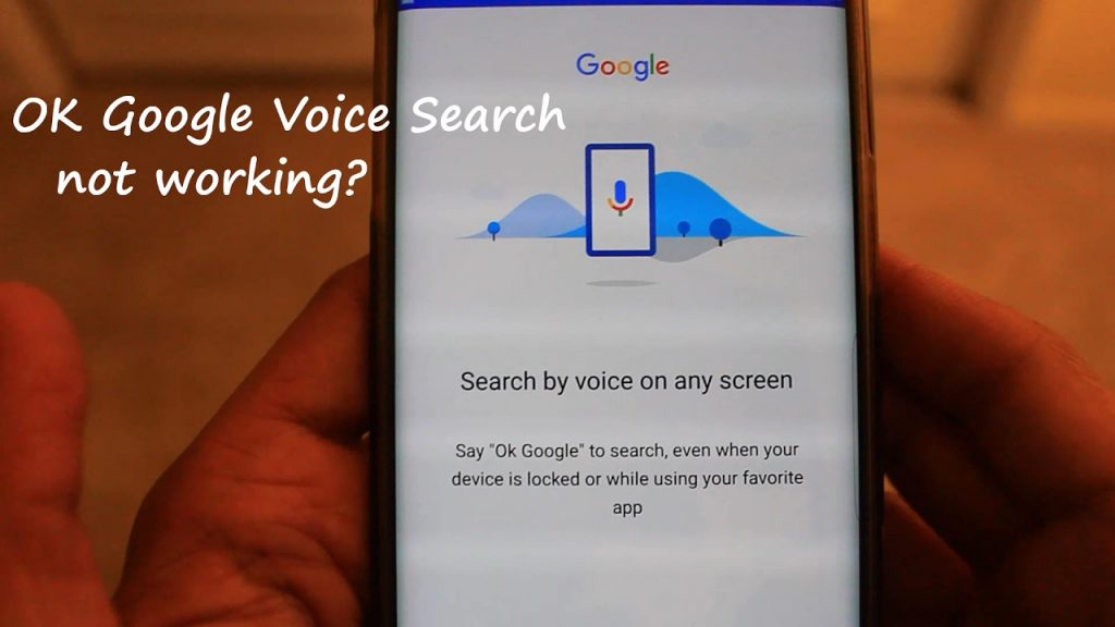 Voice Search Not Working