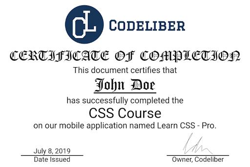 Learn CSS - Pro screenshot 10