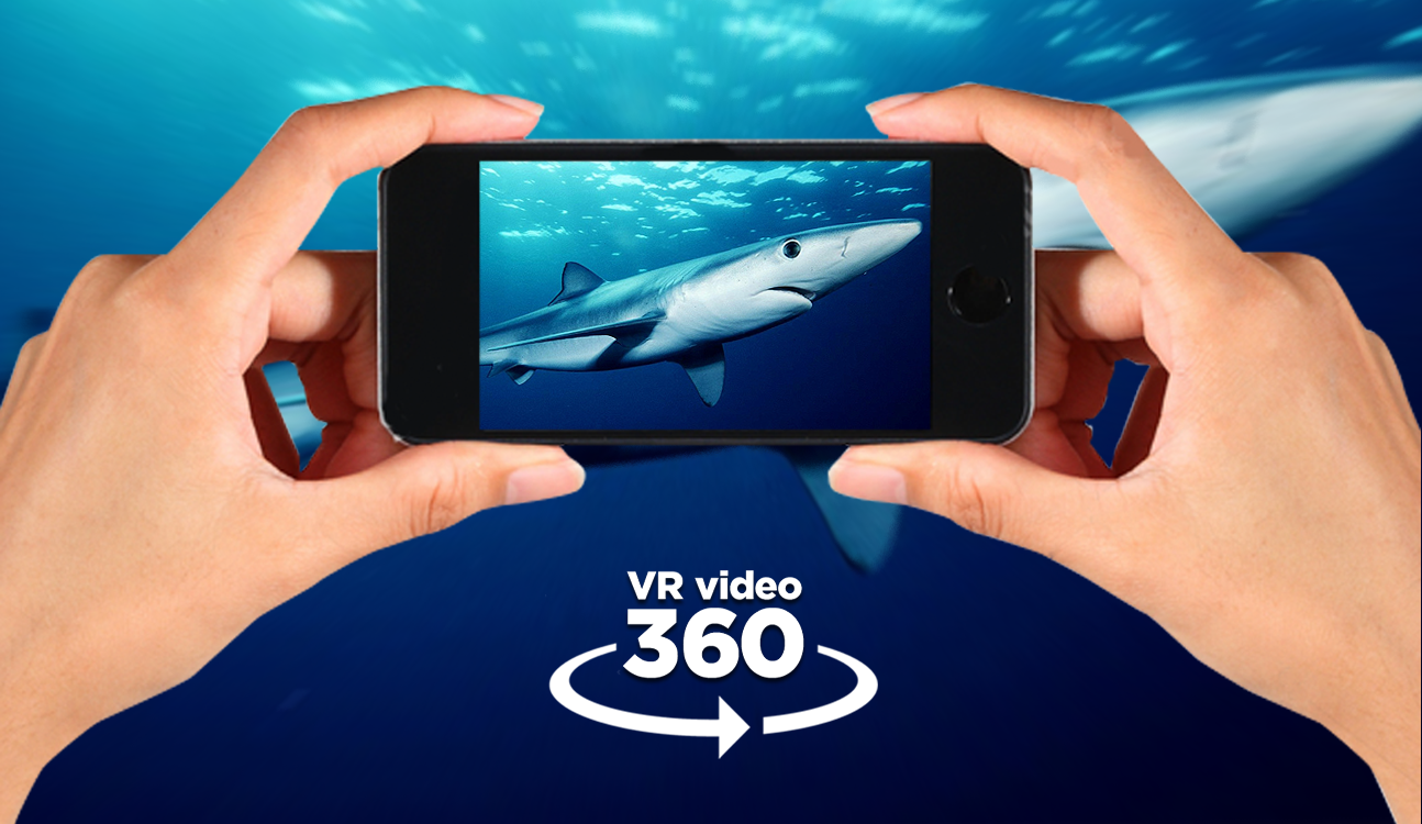 VR video 360- screenshot