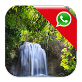 Waterfall Whatsapp Wallpaper