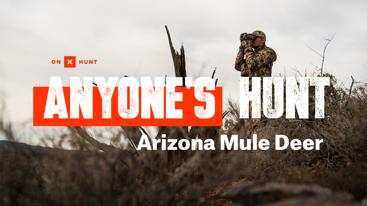 Join us for lesser-known, over-the-counter hunting opportunities and how best to explore these unique experiences.