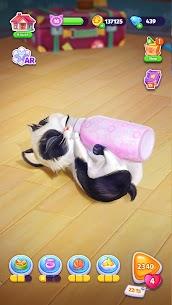 Catapolis: Cat Game | Kitty simulator 3