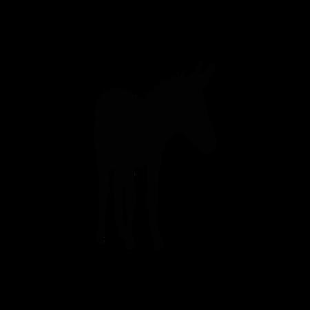 Coaching met ezels