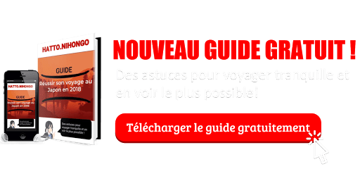Banniere de promotion ebook reussir son voyage au Japon
