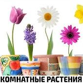 Tải Комнатные растения и уход за цветами APK