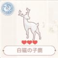 白磁の子鹿