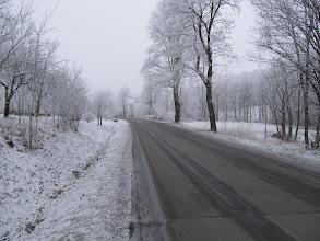 Photo: 02.Na początku jest trochę asfaltu, ale na szczęście nie za dużo i wkrótce wkraczamy do lasu.