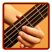 Learn how to play Bass Guitar