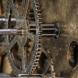 Lion's Gate by Bogdan Rusu - Artistic Objects Other Objects ( macro, wheel, clock, mechanism, ancient )