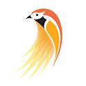 Kurulu (කුරුළු) icon