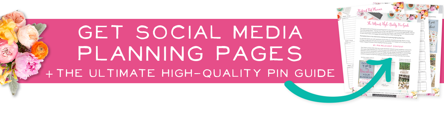 Social Media Planning Pages and a Free Pin Guide