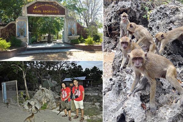 goa monyet kupang