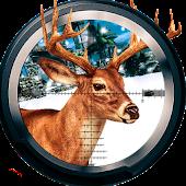Deer Sniper Hunting 2016