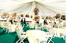 Photos and video of decorator shagun wedding planners decorators likes junglespirit Gallery