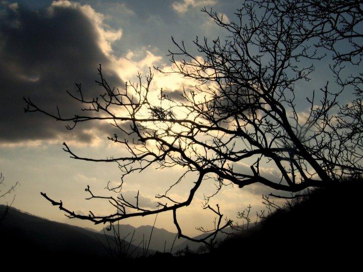 Natura e... di andrea007