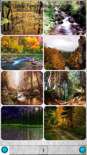 1080p Forest Backgrounds