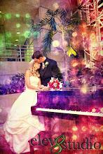 Photo: Hyatt Regency Greenville - NYE 12-31-10 - http://WeddingWoman.net - photo courtesy Amy Wood of Elev8Studio  Photography