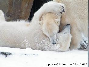 Photo: Knut umtatzt Gianna :-)