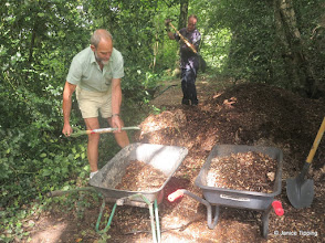Photo: Spreading wood chippings on a muddy path