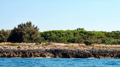 Photo: Nei pressi di Marina di Pusiano: tipica scogliera del litorale pugliese ionico