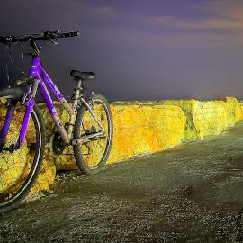 telaviv by Abu  Janjalani Abdullah - Transportation Bicycles ( bicycle, transportation )