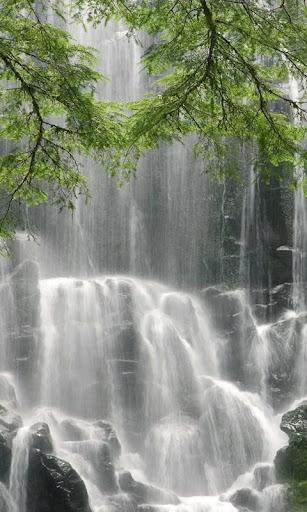 Wonderful wall of waterfall