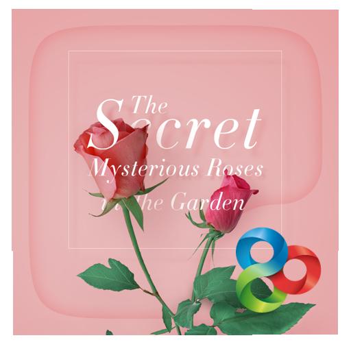 Secret ⅡGO Launcher Theme