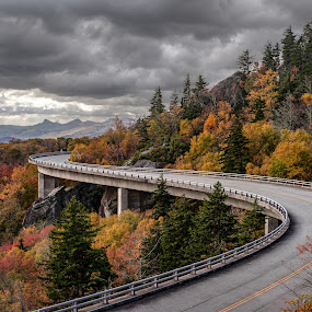 Lin Cove Viaduct by Tom Moors - Transportation Roads ( clouds, linville, lin cove viaduct, foliage, fall, trees, blue ridge parkway, overcast, road, bridge, composite )