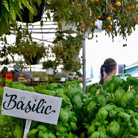 Basilic by Ethan Fraschetti - Food & Drink Fruits & Vegetables