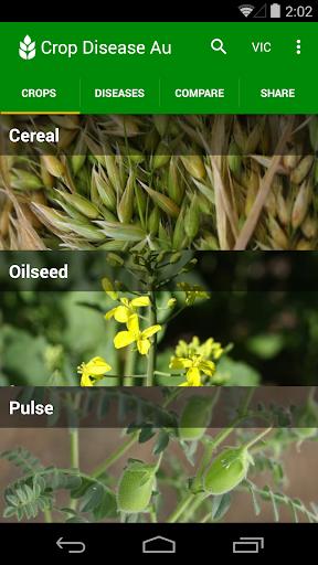 Приложения Crop Disease Au (apk) бесплатно скачать для Android / ПК screenshot