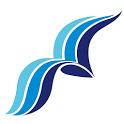 Pagine Azzurre icon